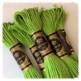 10 Échevettes de fils de coton Vert Pomme